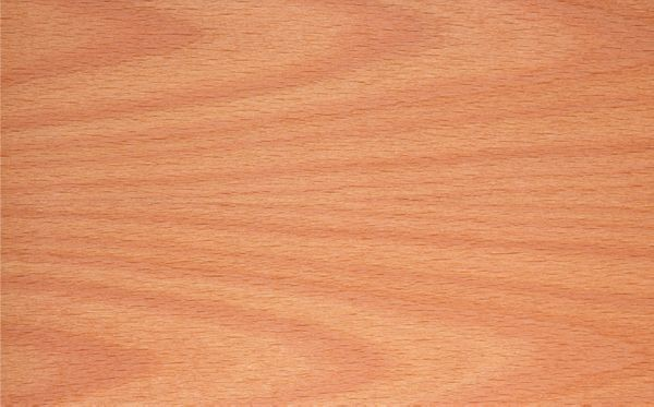 WRS MM2 beech ply active, including base